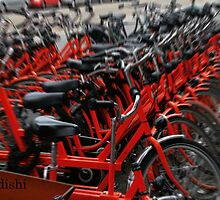 Red Bikes in Amsterdam, Holland by ibadishi