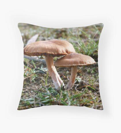 Murdunna Brown Throw Pillow