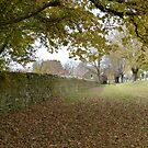 Autumn in Ross by DEB CAMERON