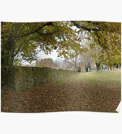 Autumn in Ross Poster