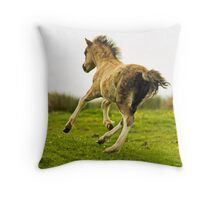 For The Sheer Joy Of It Throw Pillow