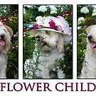 Flower Child by Trudy Wilkerson