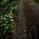 Nojoqui Falls by HeavenOnEarth