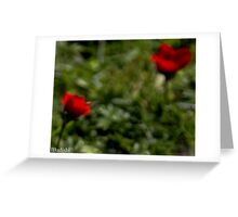 2 Red Flowers Silky Abstract Feel Greeting Card