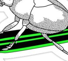 Skateboarding Beetle 2 Sticker