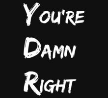 You're Damn Right by emptyminds