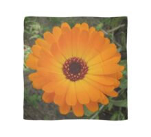 Orange Husbandman's Dial Marigold Flower Scarf