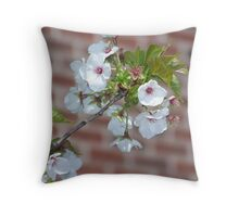 Beautiful Flowering Tree Branch Throw Pillow