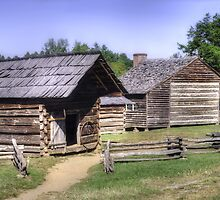A Cades Cove Homestead by LarryB007