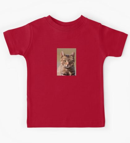 Portrait Of A Cute Tabby Cat With Direct Eye Contact Kids Tee