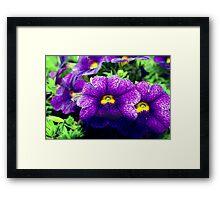 Especially purple Framed Print