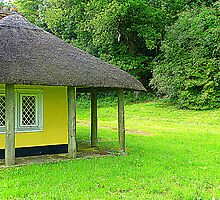Thatched Cottage by Fara