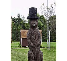 Groundhog statue Photographic Print