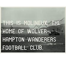 Woverhampton Wanderers Football Club Photographic Print