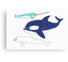 orca, narwhal and beluga Canvas Print
