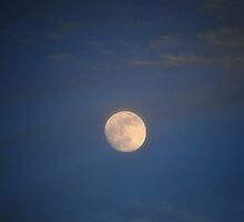 Summer Solstice Moon by Astrid Allan