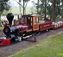 Baldwin 2-8-0 Model Loco of PVR at Paterson, NSW Australia by SNPenfold