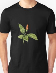 Chilly plant 1- orange fruits T-Shirt
