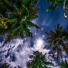 Tropical Night Sky by JennyRainbow