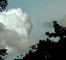 Cloud hidding by yadayunikon