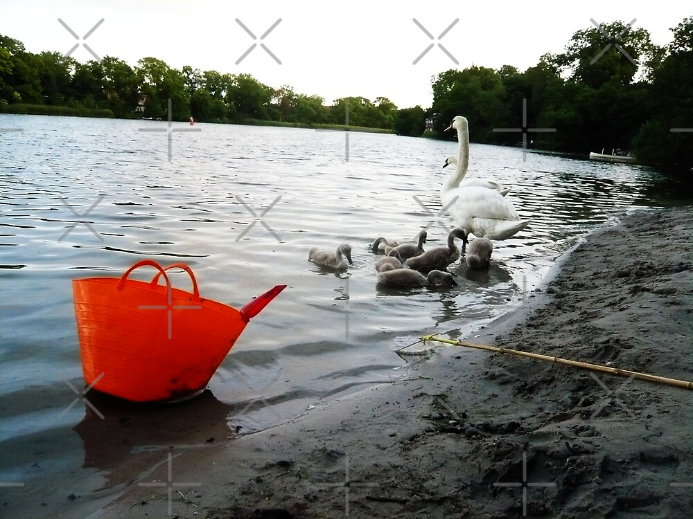 Swans & Orange Bucket by HeklaHekla