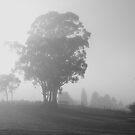 Fog - Westaway 2 by pennyswork