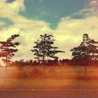 Trees by Niralee Modha