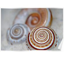 Spirals in the Sand Poster