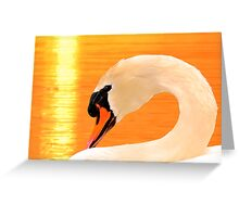 ARCH NECK MUTE SWAN GOLD LIGHT Greeting Card