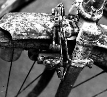 OLD BICYCLE by Jean-Luc Rollier