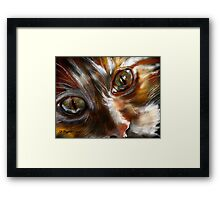 Jules featured in Cat's Pajamas Framed Print