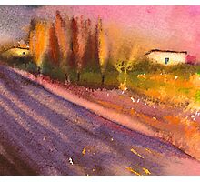 France - Lavender Field in The Provence Photographic Print