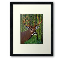 Buck by the forest Framed Print