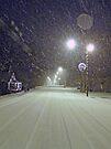 Snowy Walk by FrankieCat