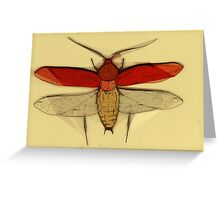 Insect Print 2 Greeting Card