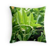 Snow Pea Vines Throw Pillow