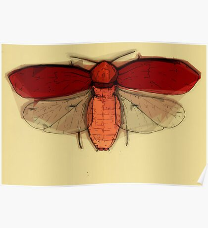 Insect Print 4 Poster