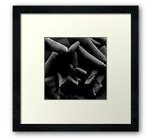 Black & White Abstract Rose Framed Print