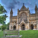 St Albans Abbey by Mark Thompson