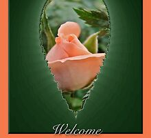 Welcome New Neighbors Greeting Card - Peach Rose Bud by MotherNature