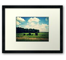 Ohio fields Framed Print