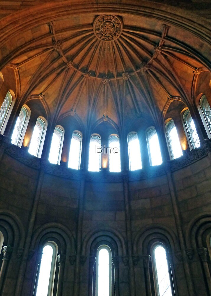 Ceiling at the Smithsonian, Washington D.C. by Bine