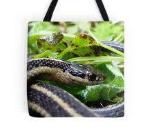 Eye of the Serpent Tote Bag