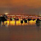 Tasman Bridge by Natasha M