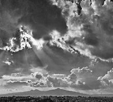 ©HCS Shining Landing In Monochrome by OmarHernandez