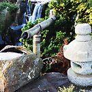 Japanese Fountain by Natasha M