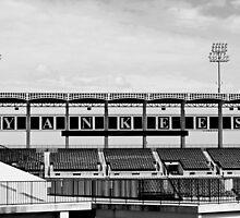 Yankees at Steinbrenner Field by Deewinged