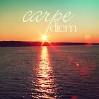 Carpe Diem by SylviaCook