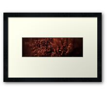 Can you spot the Troopy? Framed Print