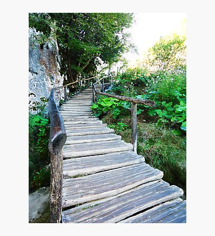 wooden stairway Photographic Print